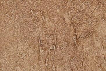 Пять занимательных фактов о потрясающем материале декоративная шпаклевка!
