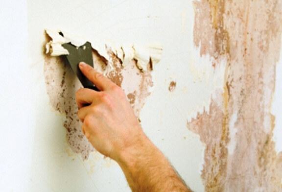 Здесь вы найдёте советы, как правильно делается демонтаж краски со стен