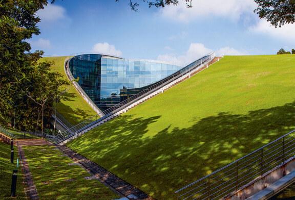 Как правильно выполнить озеленение крыши?