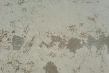 Способы демонтажа краски со стен